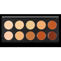 10 Color Camouflage and Concealer Palette