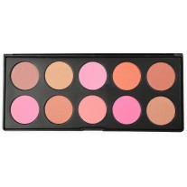 10 Color Professional Blush palette